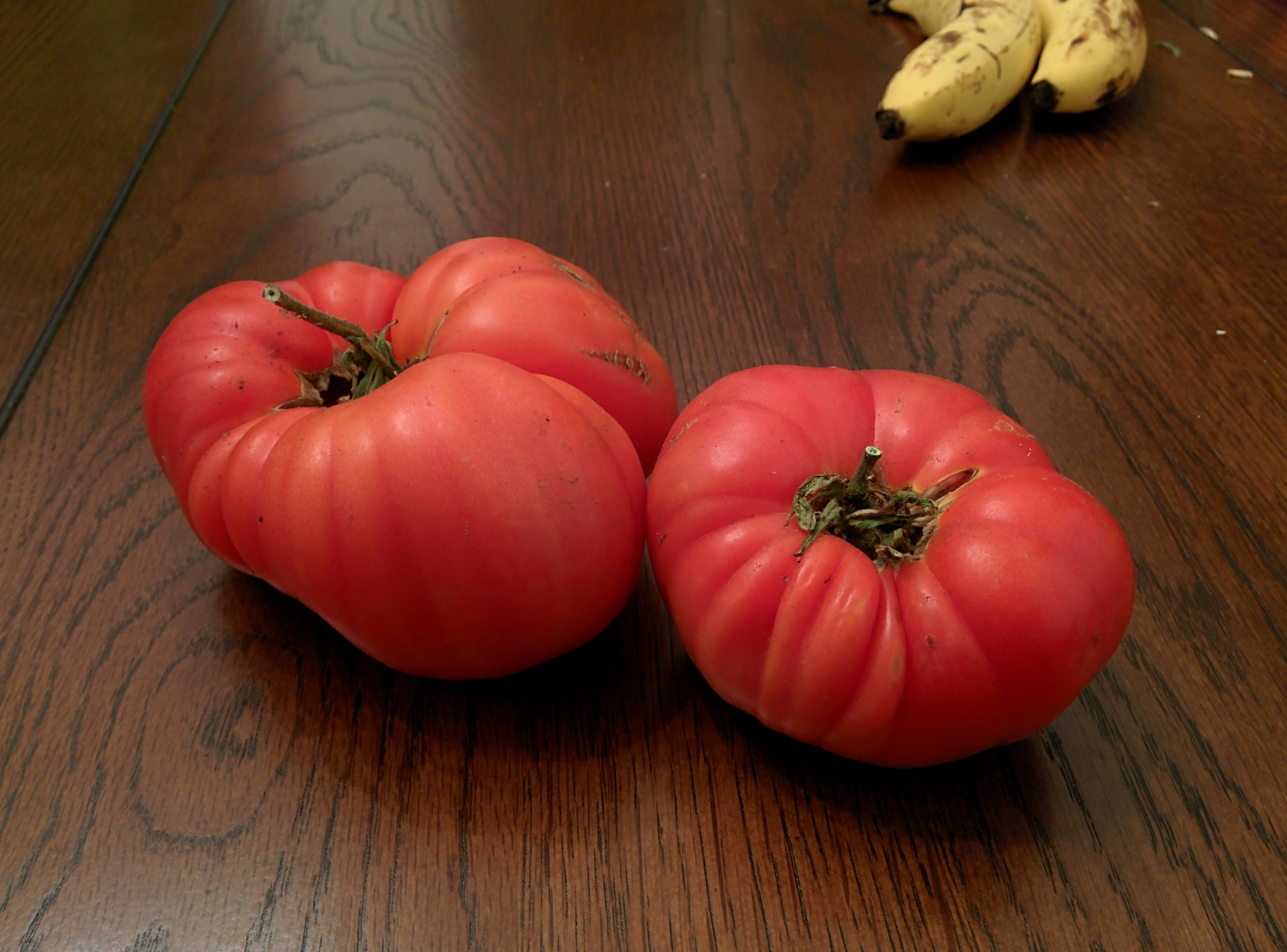 Gigantesque Tomatoes