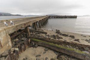 Pier at Crissy Field - no filter